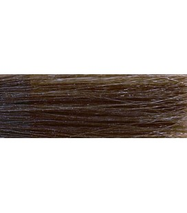 CHI Ionic Color 6B - Chatain clair beige (90g)