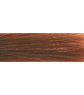 CHI Ionic Color 6RB - Chatain clair rouge pale (90g)