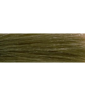 CHI Ionic Color 6N - Chatain clair (90g)