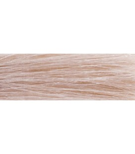 CHI Ionic Color 9G - Blond clair doré (90g)
