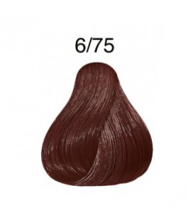 Color Touch 6/75 blond foncé marron acajou (60ml)