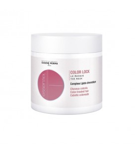 Color Lock le masque (500ml)