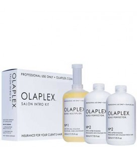 Olaplex hair salon kit